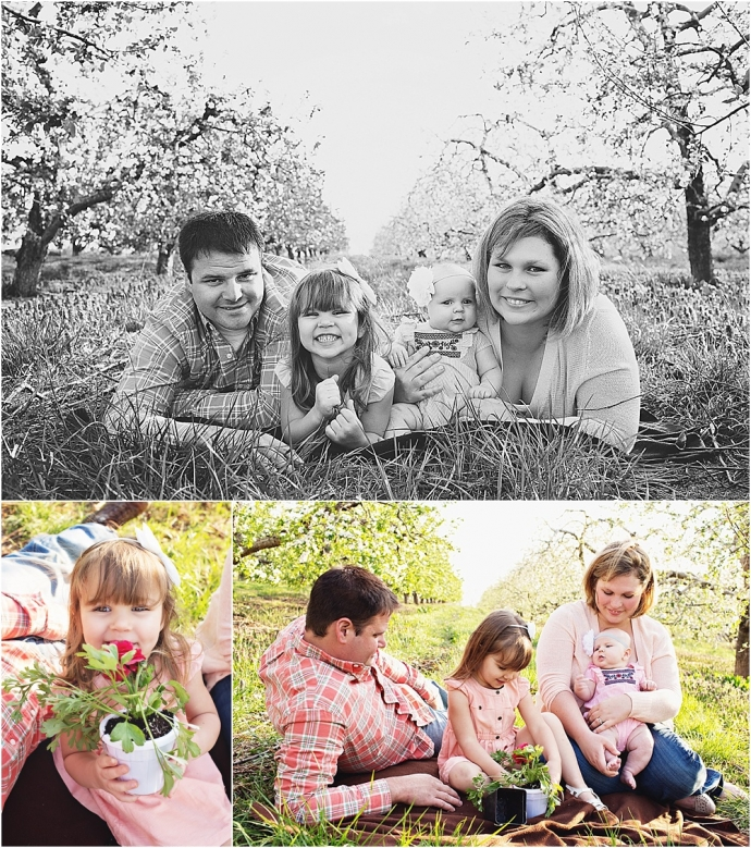 Orchard, fall, family photographer